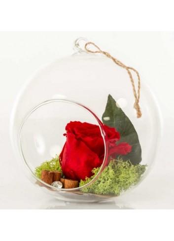 Sfera in vetro trasparente con rosa stabilizzata color rosso D5963 Rose stabilizzate Cuorematto