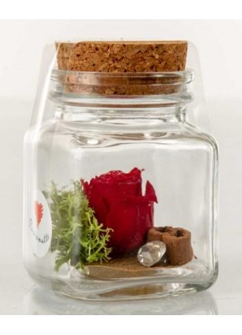 Barattolino in vetro con rosa stabilizzata color rosso D5971 Rose stabilizzate Cuorematto